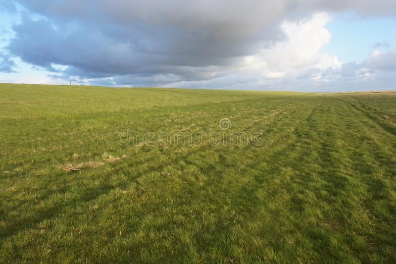 Infinity sky and meadow horizon royalty free stock photography
