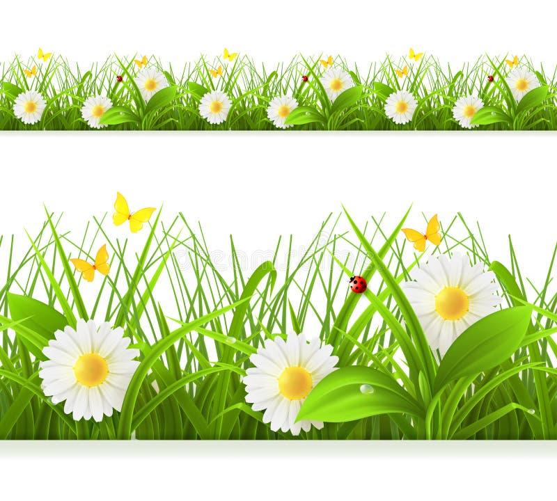 Spring green grass seamless border royalty free illustration