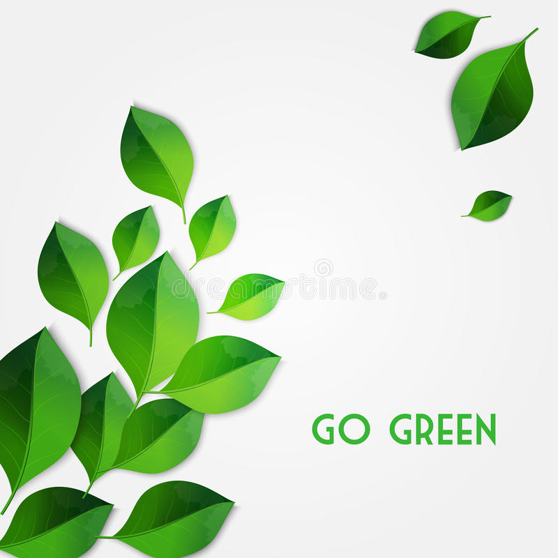 Going Green: What Does Going Green Mean?