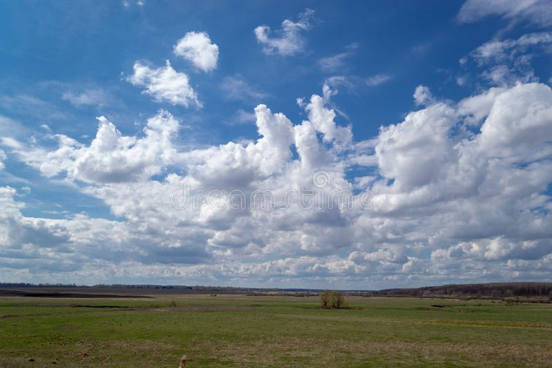 Spring green plain with white cumulus clouds above it. Landscape view to the horizon. Landscape view to the horizon. Spring green plain with white cumulus royalty free stock photo