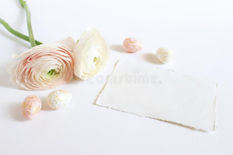 Spring greeting card, invitation with pink and white golden spotted Easter eggs, Persian buttercups, Ranunculus flowers. And empty craft paper lying on white stock images
