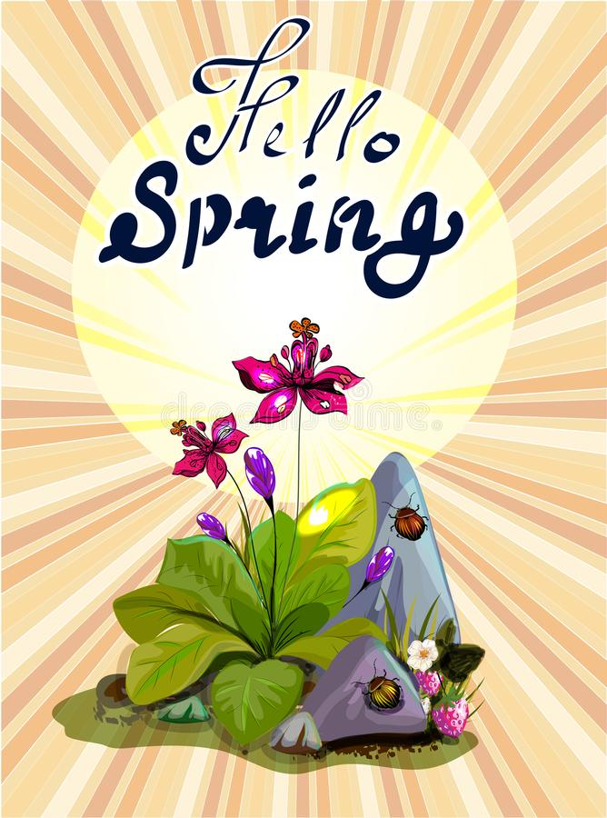 Hello spring banner with garden flowers and stones stock image