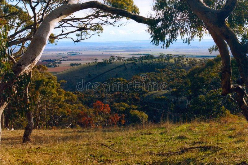 Spring Gully Conservation Park, Australia stock image