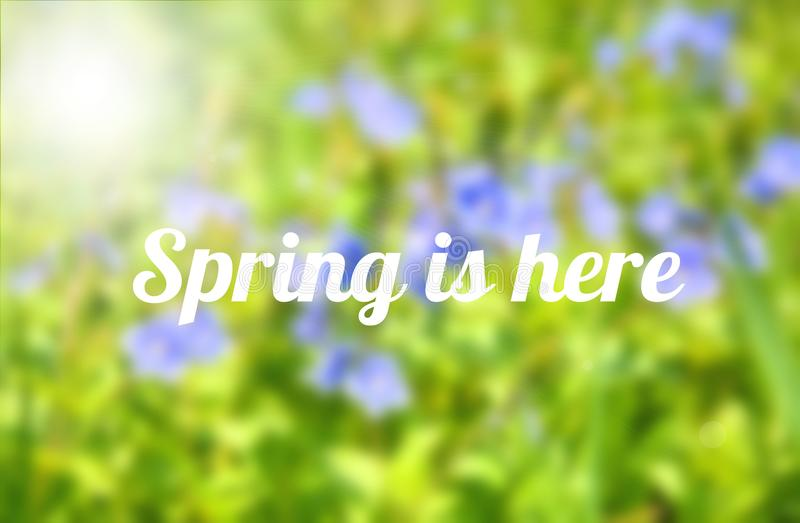 Spring is here stock photo
