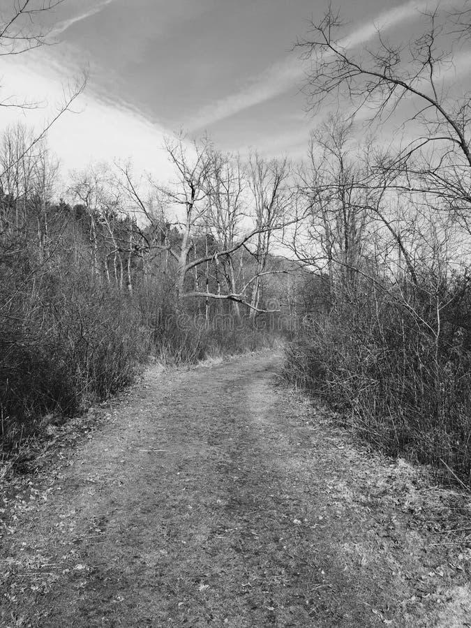 Spring hike stock image