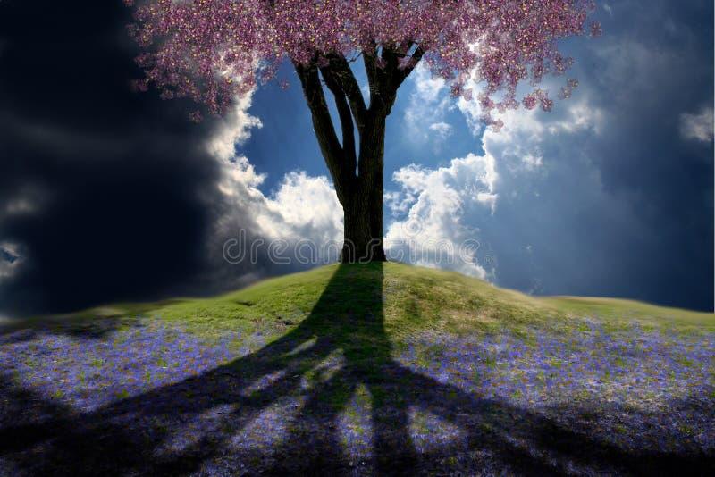 Spring Hill Lizenzfreies Stockbild
