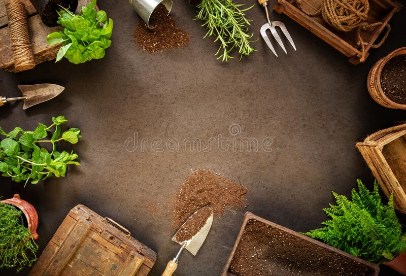 Spring hobby garden works concept royalty free stock photo