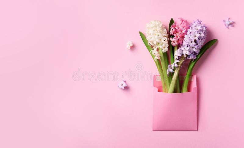 Spring hyacinth flowers in pink postal envelope over punchy pastel background with copy space. Top view, flat lay. Banner. Spring stock photos