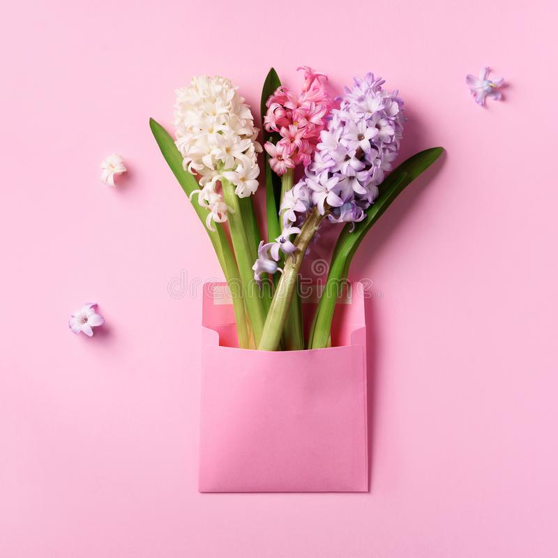 Spring hyacinth flowers in pink postal envelope over punchy pastel background with copy space. Top view, flat lay. Square crop. stock photos