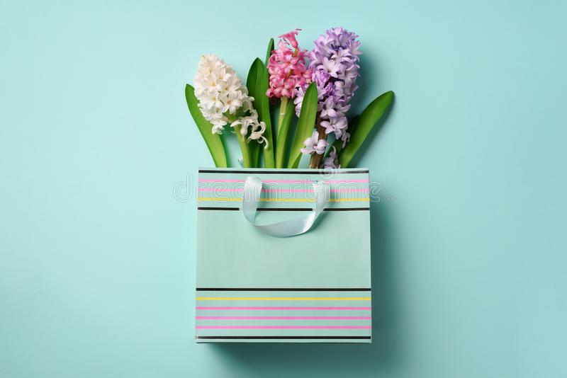 Spring hyacinth flowers in shopping paper bag on blue punchy pastel background. Banner with copy space. Spring, summer or garden royalty free stock photography