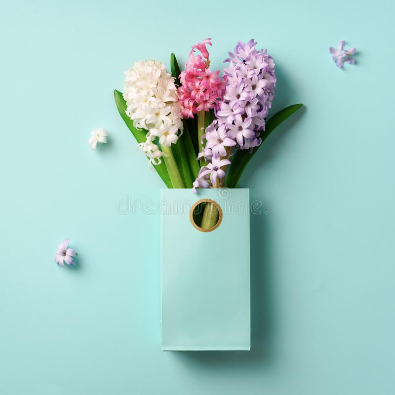 Spring hyacinth flowers in shopping paper bag on blue punchy pastel background. Square crop. Spring, summer or garden concept. royalty free stock photo