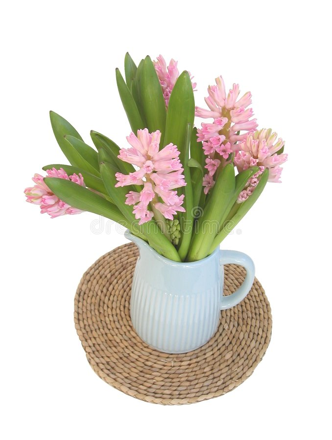 Download Spring hyacinths stock image. Image of hyacinths, pink - 502529