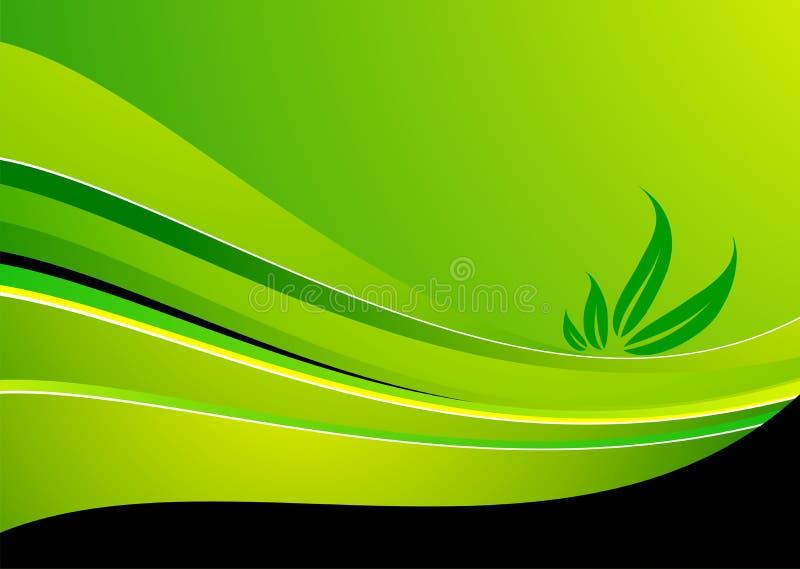 Spring illustration. Vector spring illustration with leaf on green background royalty free illustration