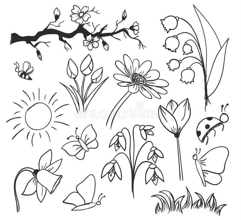 Spring ink drawing flowers isolated royalty free illustration