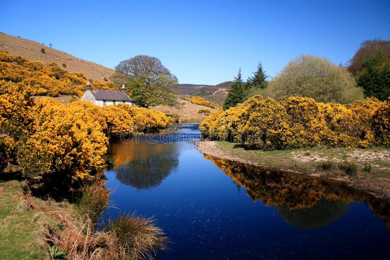 Spring in Ireland stock photography