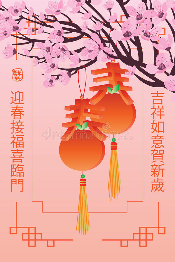 Spring knot mandarin orange hang. This illustration is design spring calligraphy with mandarin orange hanging at cherry tree vector illustration