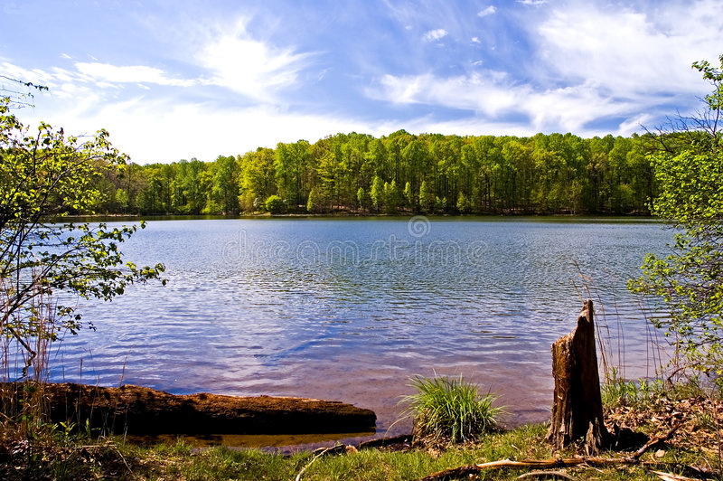 Spring at the Lake royalty free stock photography