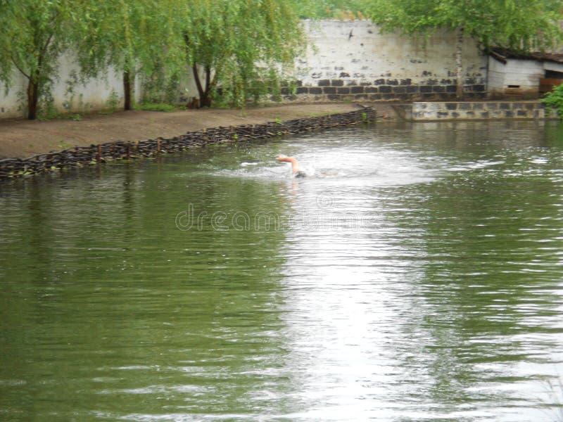 Spring lake stock photo