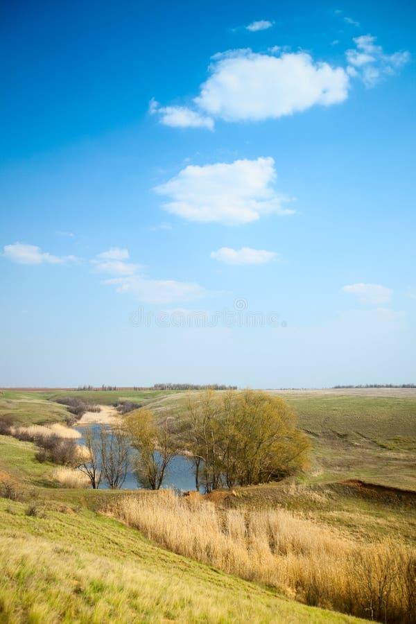 Free Spring Landscape Stock Images - 11955884