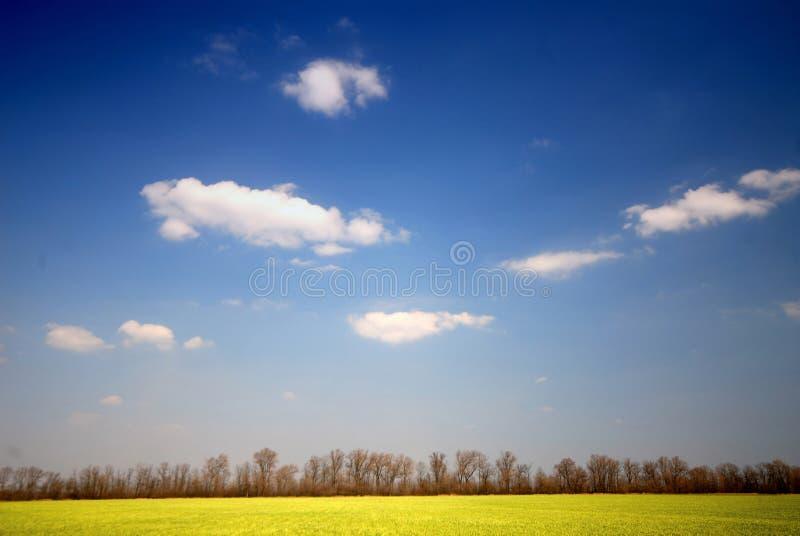 Download Spring Landscape Royalty Free Stock Images - Image: 2252539
