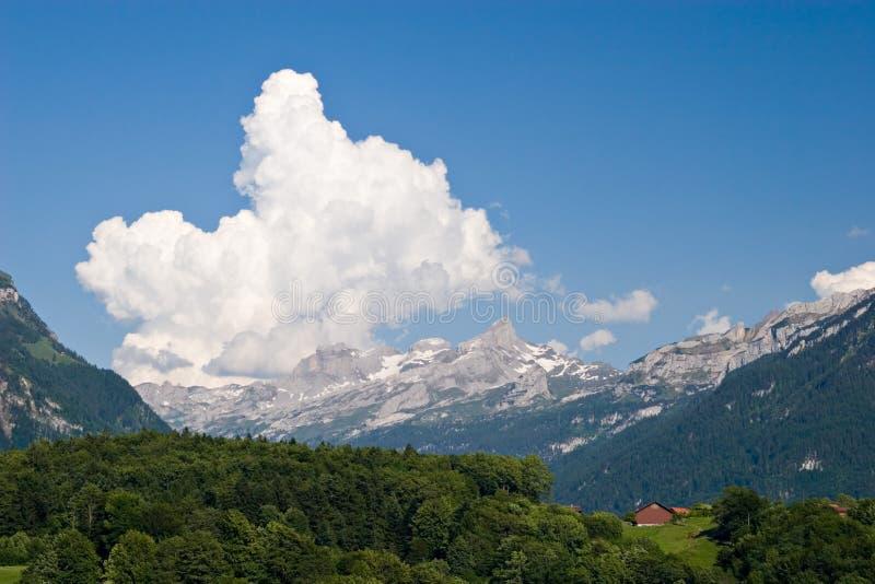Download Spring Landscape Royalty Free Stock Image - Image: 683356