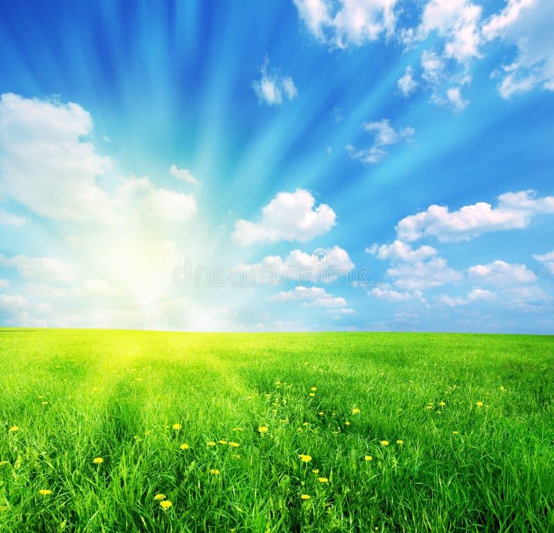 Free Spring Landscape Stock Photos - 7868913