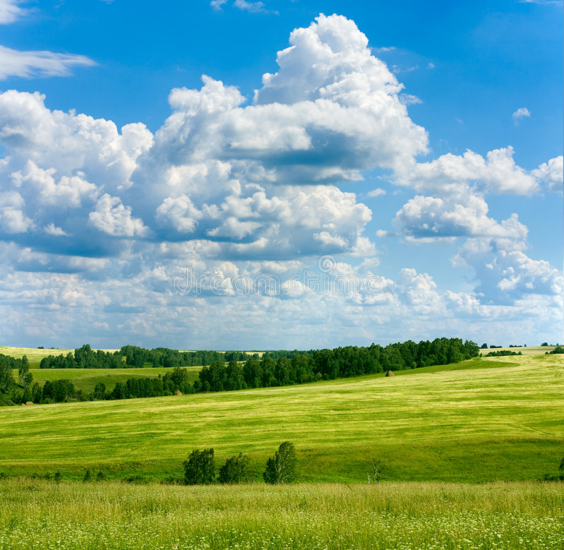 Spring landscape royalty free stock photo