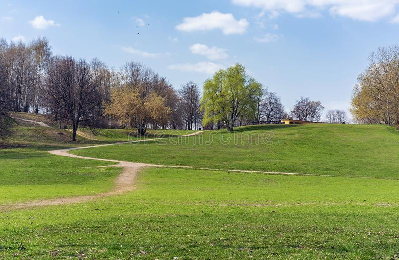 Spring landscape in a city park with green trees and footpaths royalty free stock photo