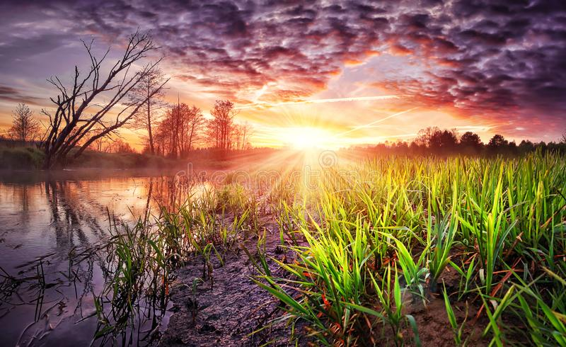 Spring landscape of colorful sunrise with beautiful sky over river. Wild spring nature in the morning. Vivid sunbeams on horizon stock photography
