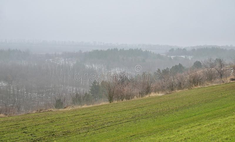 Spring landscape of fields against a background of hilly forests stock photo