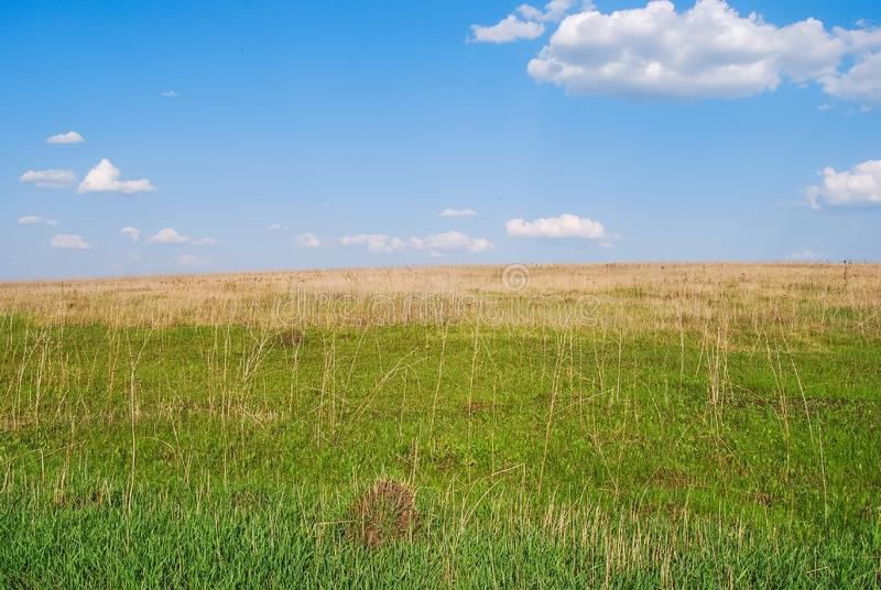 Spring landscape with fields, green hills, with white clouds against the blue sky. Tula region, Russia stock images