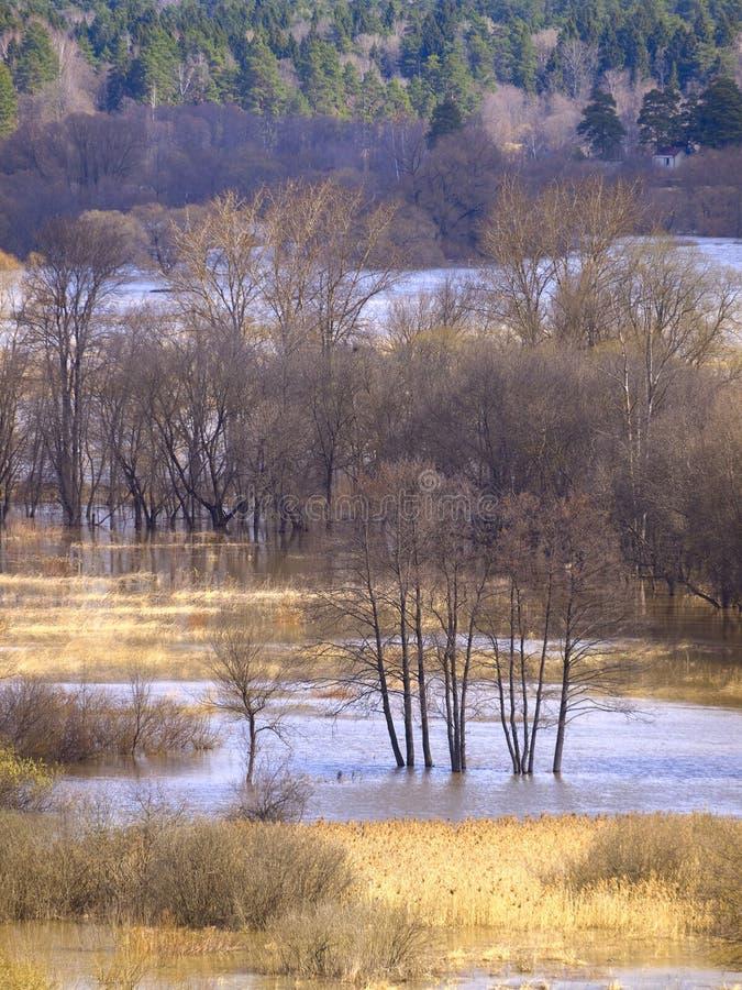 Download Spring landscape stock image. Image of travel, river - 31381213