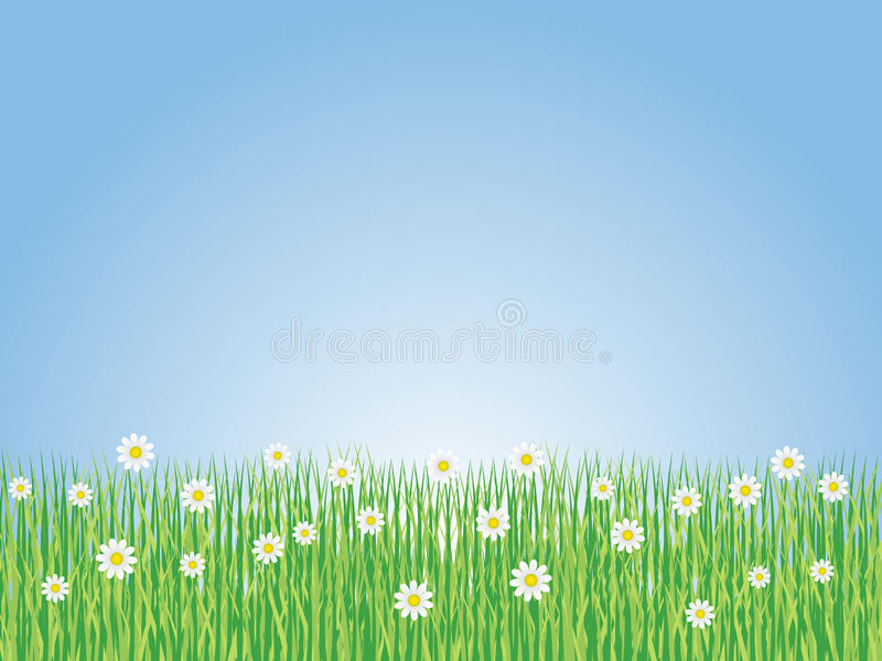 Download Spring Landscape With Flowers Stock Illustration - Image: 12840403