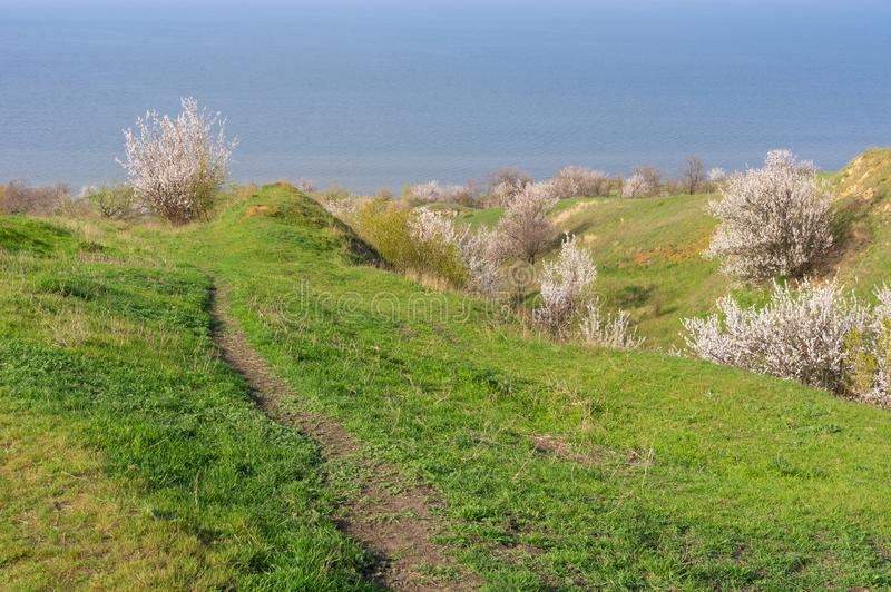 Landscape foot path leading down to Kakhovka Reservoir riverside located on the Dnipro River. Spring landscape foot path leading down to Kakhovka Reservoir stock photos