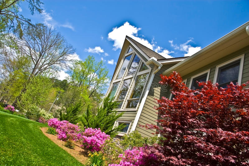 Spring Landscape Front of House. Azalea bushes blooming in the landscaping, green fescue grass, and plants, on the front of the house royalty free stock images