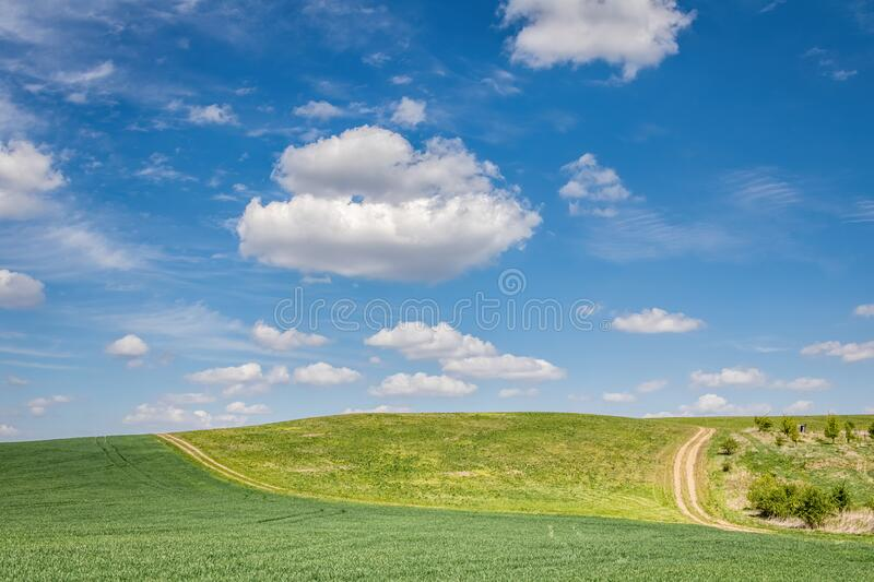 Spring landscape with green fields under amazing blue sky royalty free stock photography