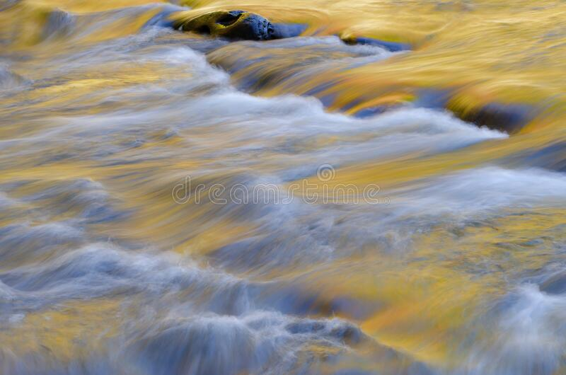 Spring Little River Golden royalty free stock photo