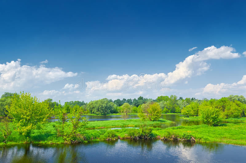 Landscape Narew river blue sky clouds green trees. Spring landscape by The Narew braided river. Masovia, Poland. Blue sky clouds green trees countryside stock image