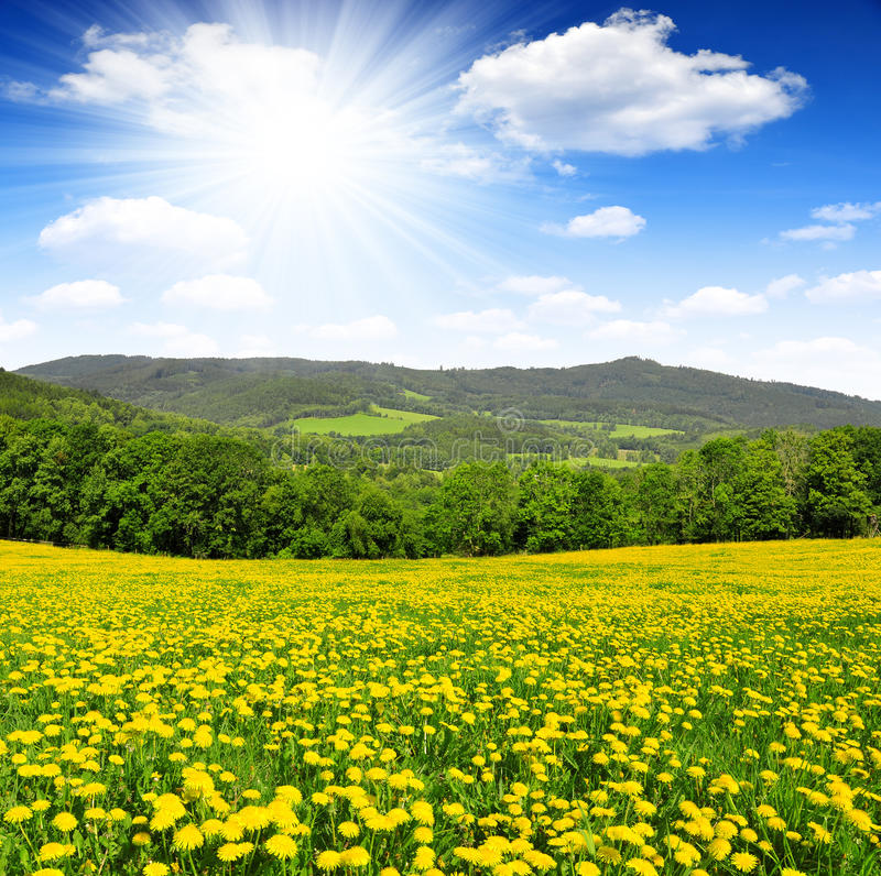 Download Spring landscape stock photo. Image of clearing, countryside - 39239898