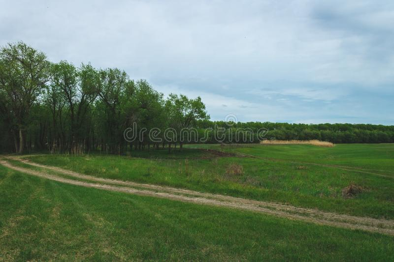 Spring landscape of nature of Russia. Forest landing near the river. Green grass and road. welcome to Russia royalty free stock photography
