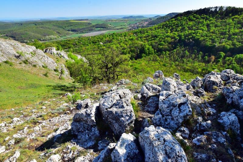 Spring landscape palava royalty free stock photo