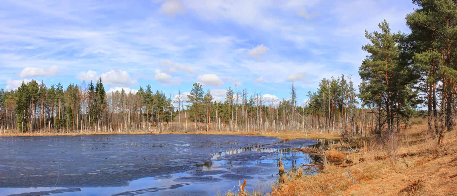 Spring landscape ,Russia stock photography