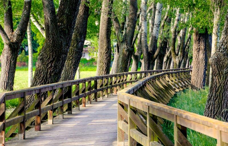 Landscape wooden bridge stock photos