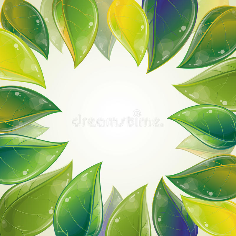 Download Spring leaves frame stock vector. Image of environment - 19298128