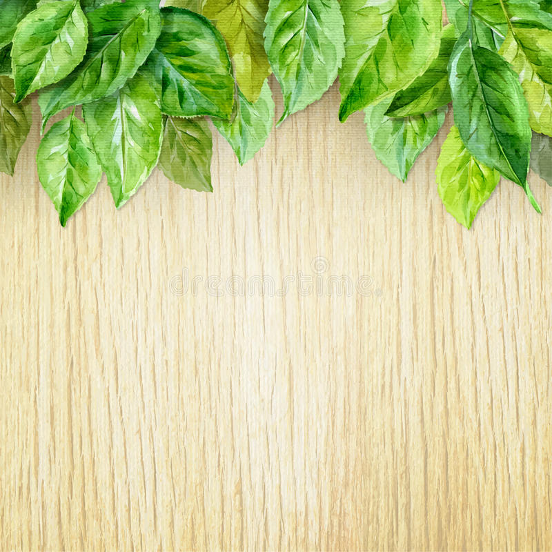 Spring leaves on wood background. Watercolor illustration. vector royalty free illustration