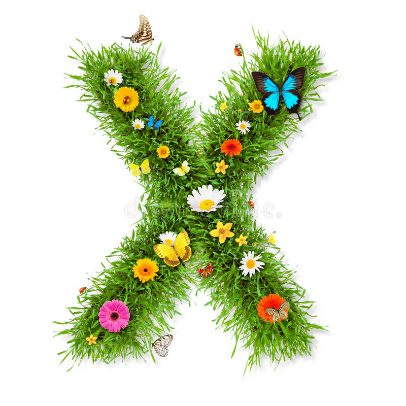 Image result for the letter x spring