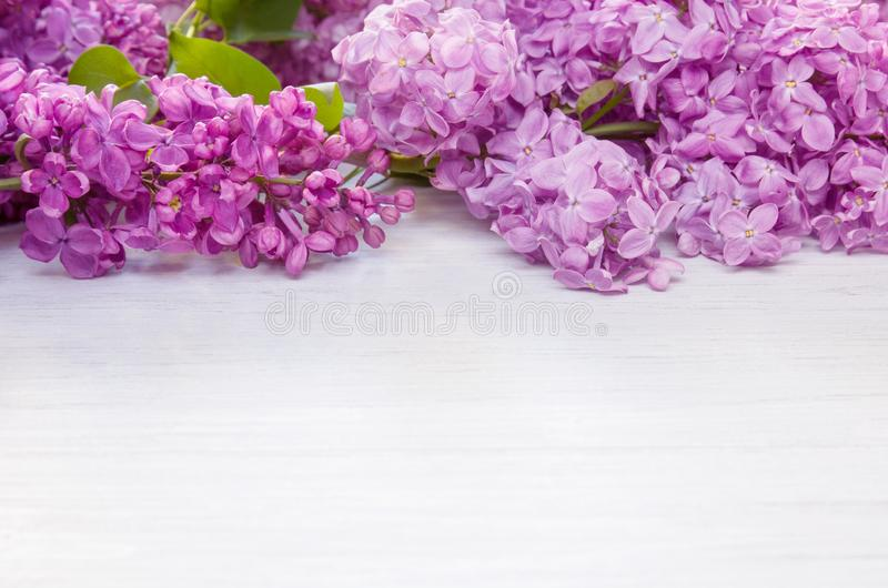 Spring lilac flowers as frame on white wooden table background, copy space stock images