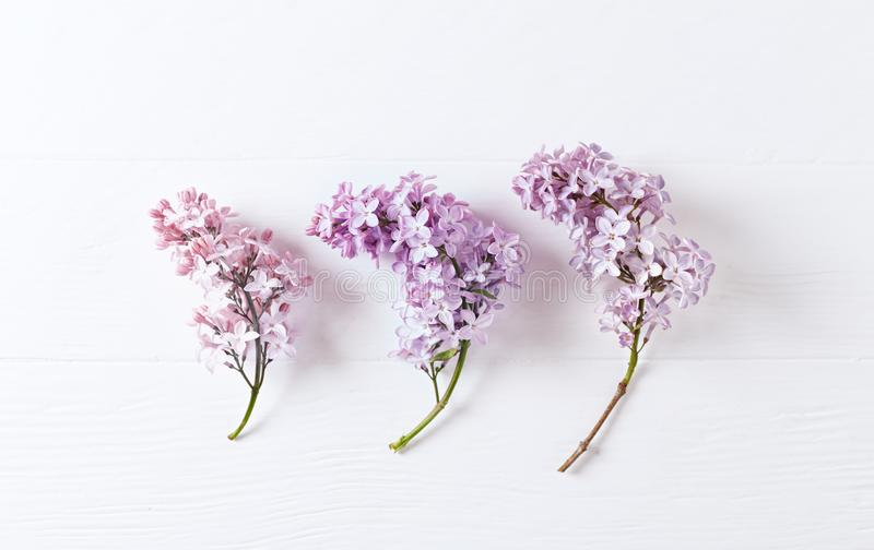 Spring Lilac Flowers Top view. Horizontal. royalty free stock photo