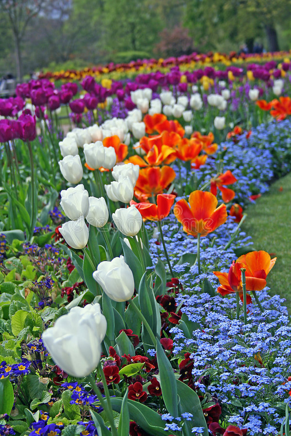 Spring in London stock photography