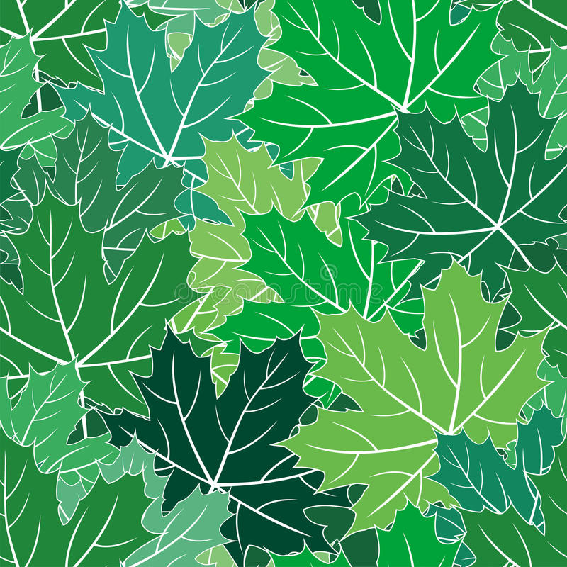 Download Spring Maple Green Leaves Seamless Vector Texture Stock Vector - Image: 14479101